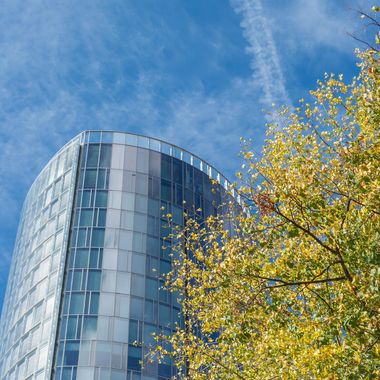 Köln; Hochhaus; Baumkrone; Himmel; Corporate Social Responsibility