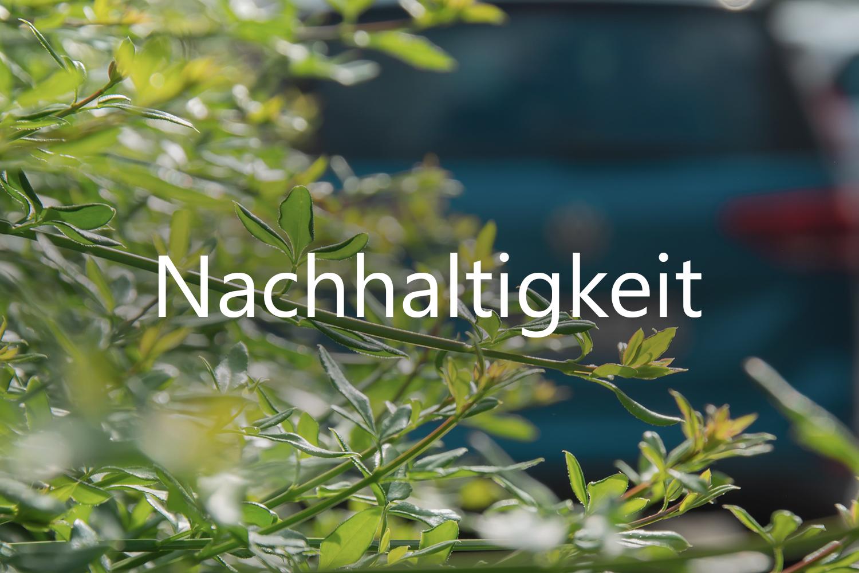 Grüne Pflanzen im Vordergrund und blaues Auto im Hintergrund für Nachhaltigkeit
