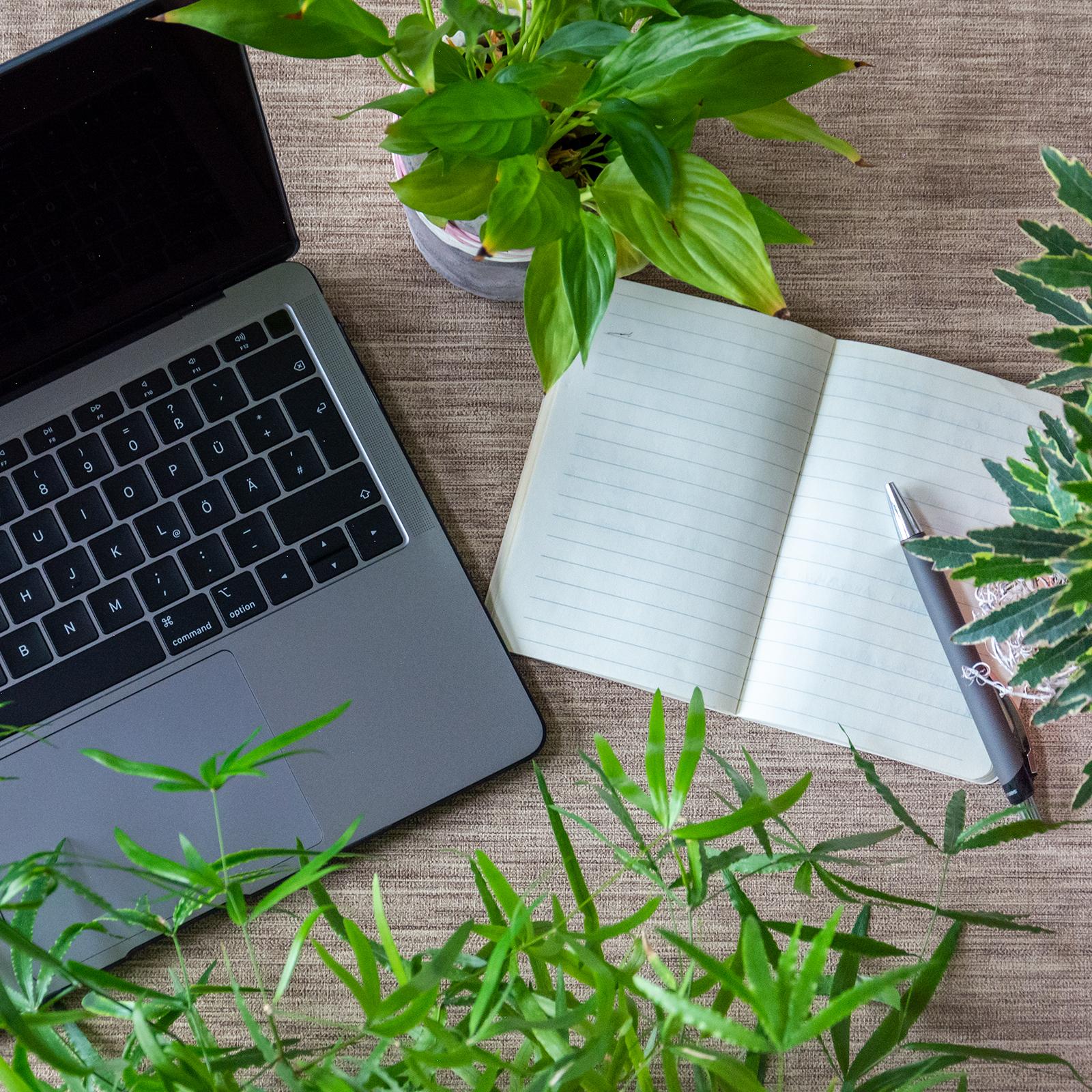 Arbeitsplatz; Büro; Schreibtisch; Nachhaltigkeit; Nachhaltige Entwicklung; Pflanzen