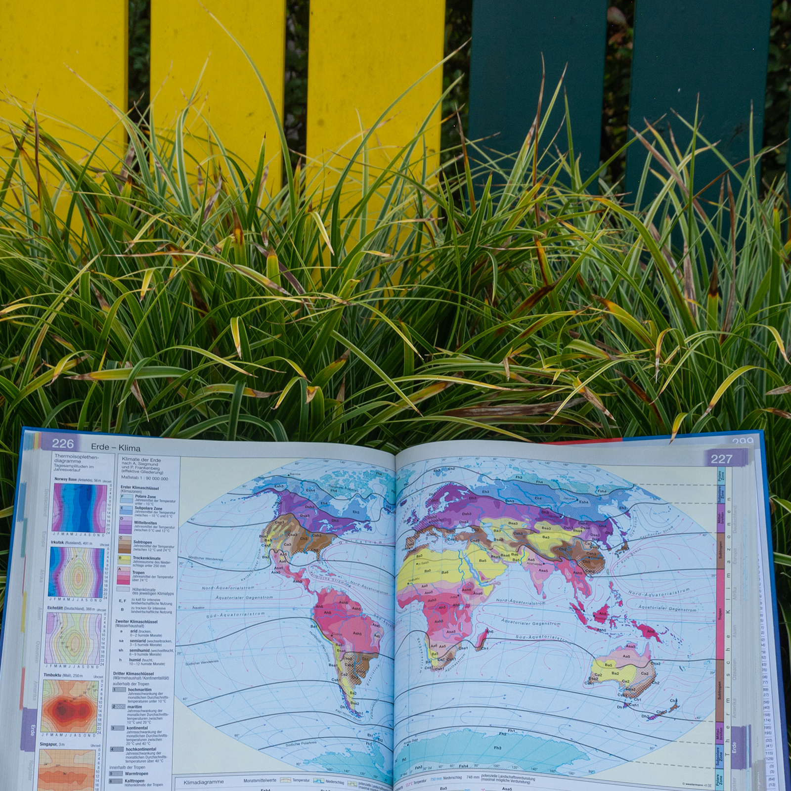 Landkarte; Weltkarte; Grün; Pflanzen; City-Maut; Norwegen