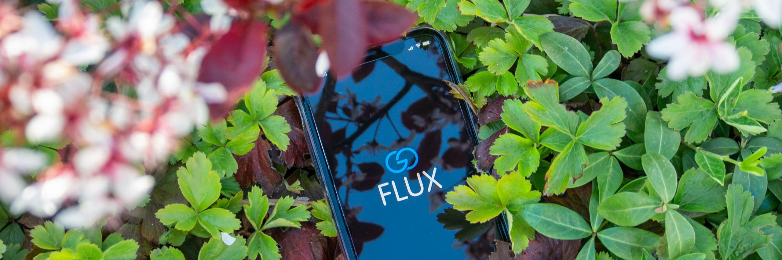 Nachhaltiger Konsum – So setzt das goFLUX-Team Nachhaltigkeit um