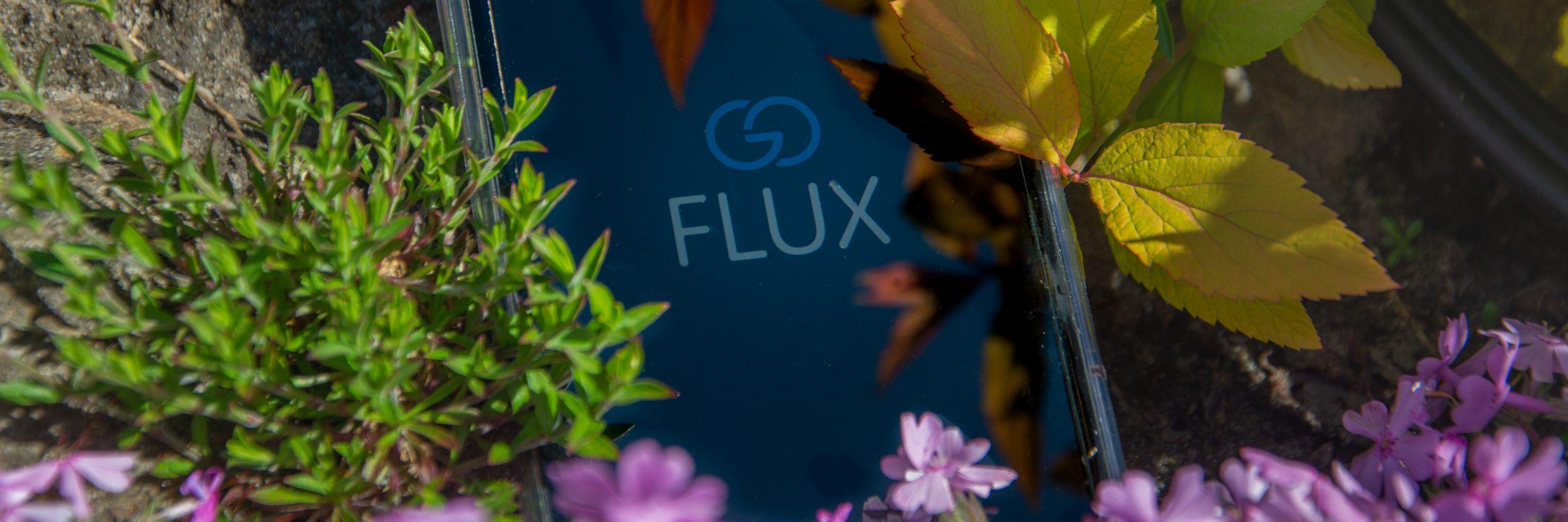 Blumen; grün; Handy; goFLUX-App; goFLUX Logo; Nachhaltigkeit bei Haushaltsprodukten