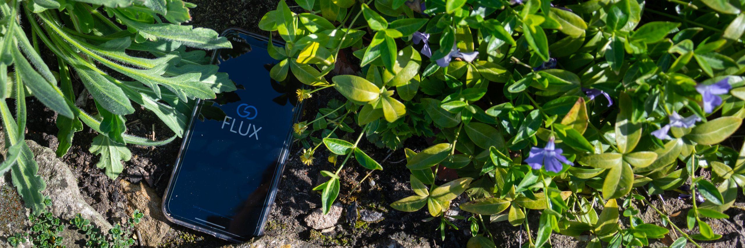 Blumen; grün; Handy; goFLUX-App; goFLUX Logo; nachhaltige Digitalisierung
