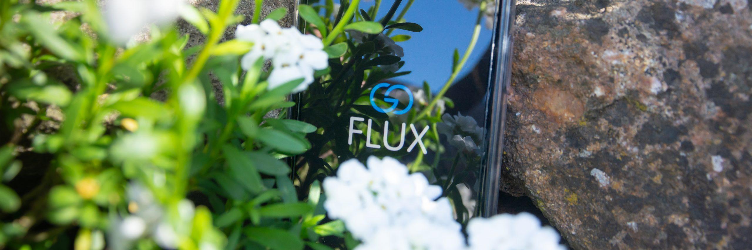 Blumen; Garten; goFLUX; goFLUX-App; Nachhaltigkeit; nachhaltige Mobilität